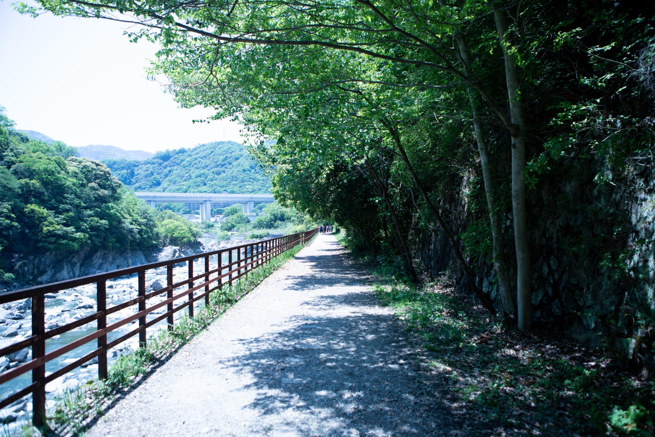 JR福知山線廃線敷