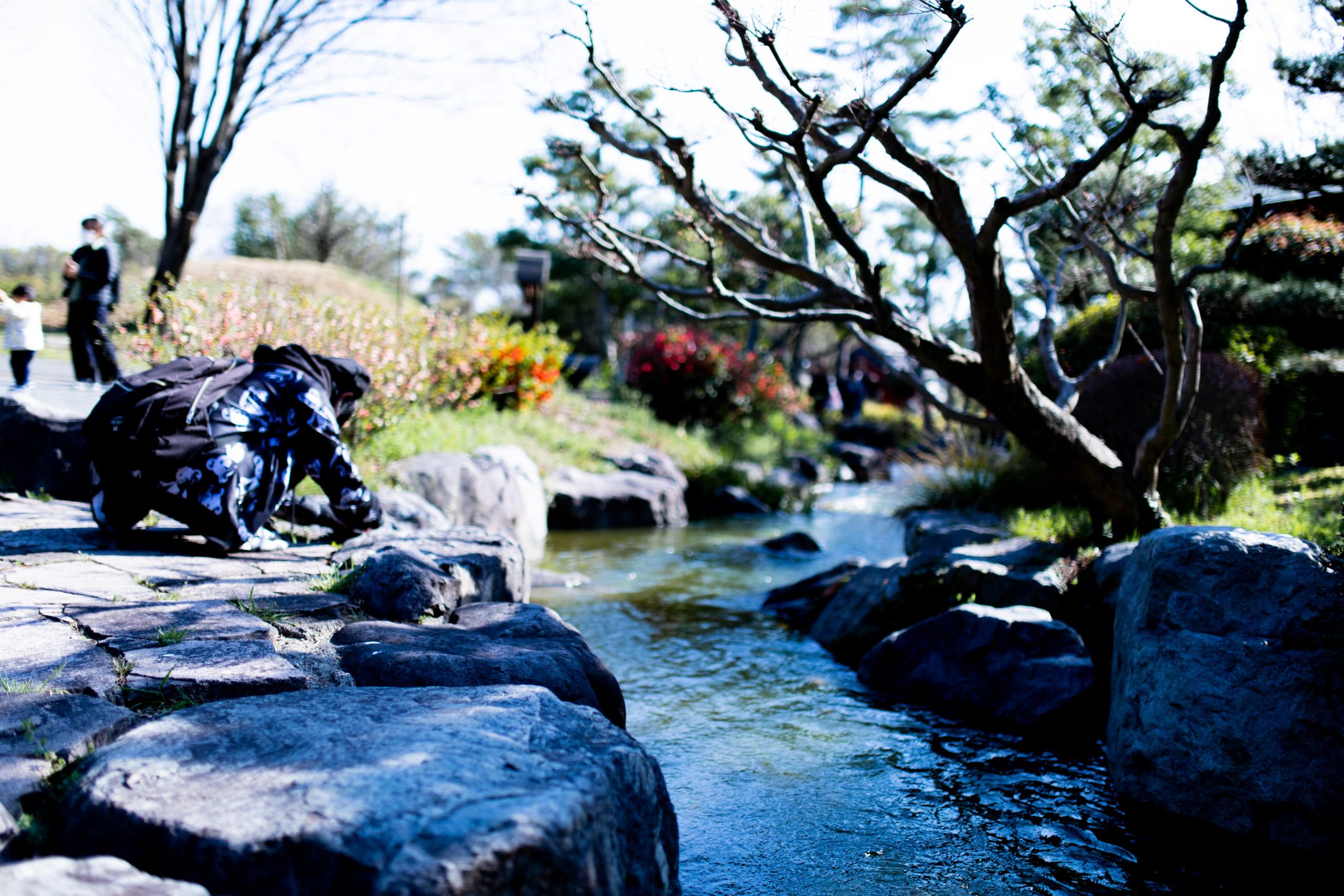 フォトウォーク-鶴見緑地公園